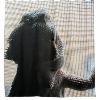 Funny Bearded Dragon Picture Shower Curtain
