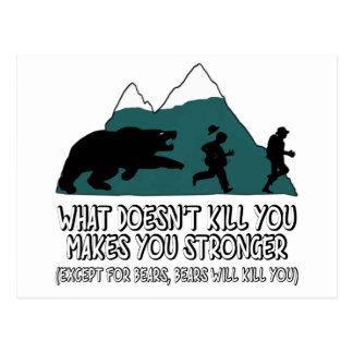 Funny bears postcard