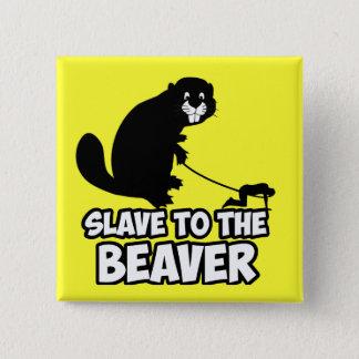 Funny Beaver 15 Cm Square Badge