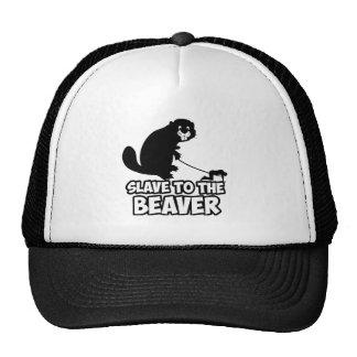 Funny Beaver Cap