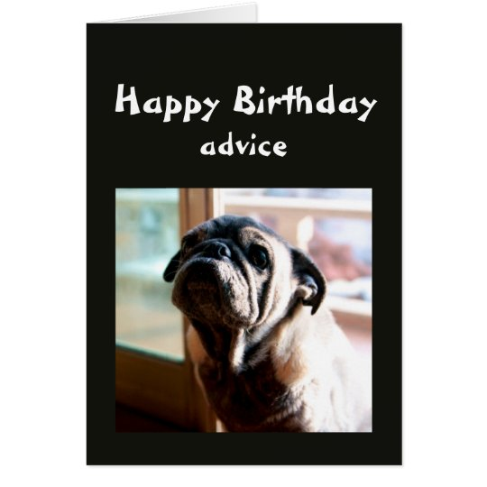 Funny Birthday Advice about Lighting from Pug Dog