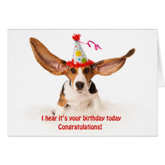 Funny birthday card basset hound hound dog with pi