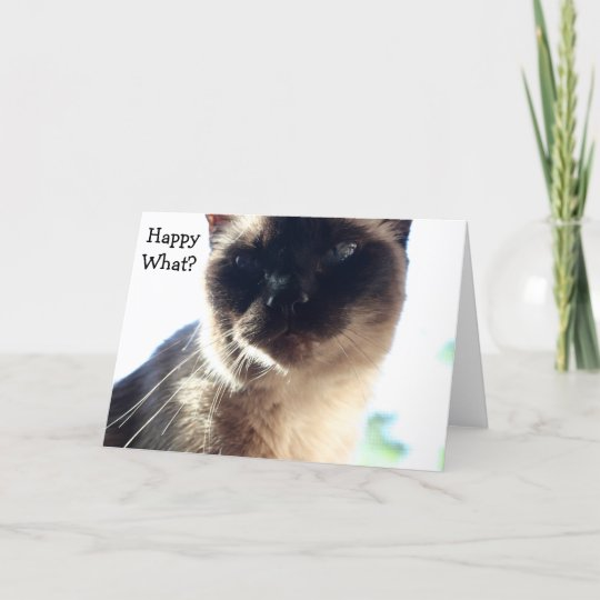 Funny Birthday Card With Cat Happy What Zazzle