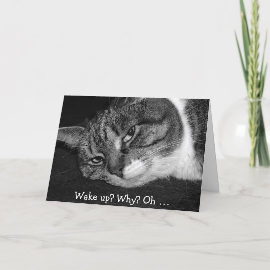 Funny Birthday Card With Cat Wake Up Why