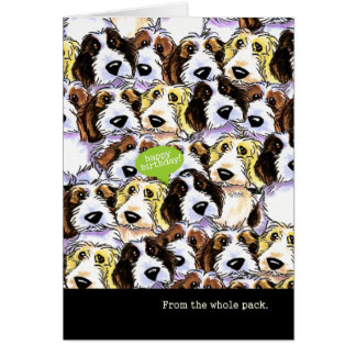 Funny Birthday from Group PBGV Dogs Greeting Card