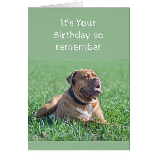 Funny Birthday Old & Wrinkly Dog Age Card