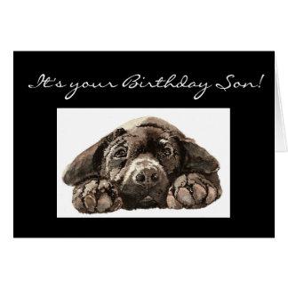 Funny Birthday Son, Labrador Retriever Greeting Card