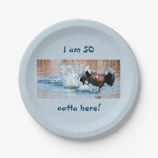 Funny Black Goose Photo Running Away on Water Paper Plate