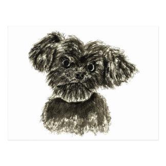 Funny black miniature Schnauzer puppy art postcard