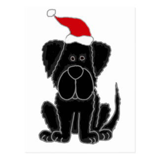 Funny Black Newfoundland Dog Christmas Postcard