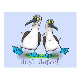 Funny blue footed boobies seabird dancing cartoon postcard