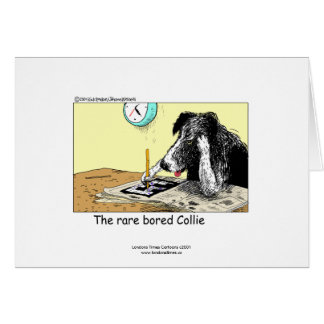 Funny Border Collie Greeting Card Greeting Card