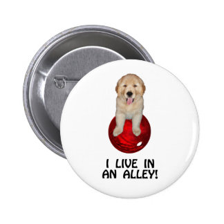 Funny Bowling Shirts and Novelty Gifts Pinback Button