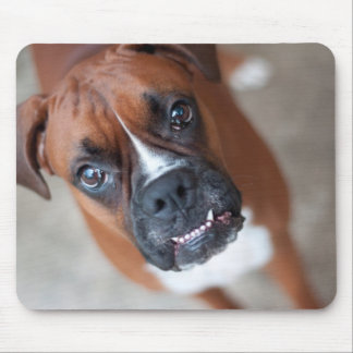 Funny boxer dog mouse mat