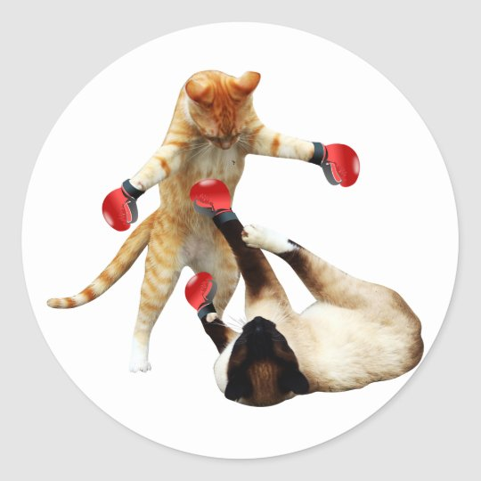 Funny boxing cats classic round sticker