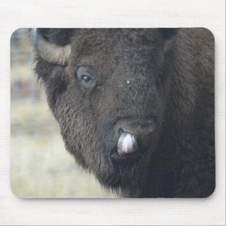 Funny Buffalo Mouse Mat