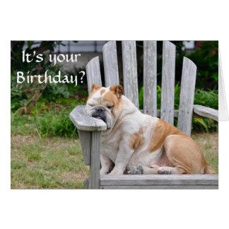 Funny Bulldog Birthday Greeting Card