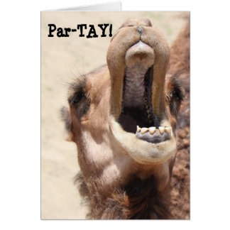 Funny Camel Birthday, Partay, go wild! Greeting Card