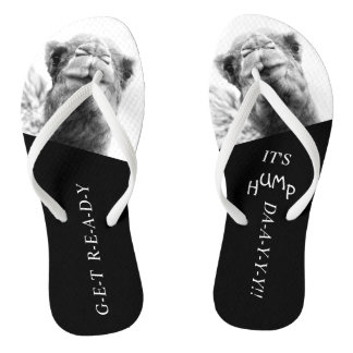 Funny Camel Hump Day Photo Flip Flops