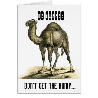 FUNNY CAMEL PERSONALISED BIRTHDAY CARD