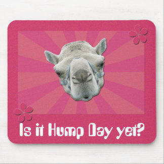 Funny Camel Retro Sunburst and Flowers Hump Day Mouse Mat