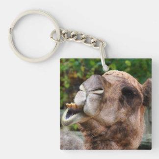 Funny Camel Wildlife Animal Photo Single-Sided Square Acrylic Key Ring