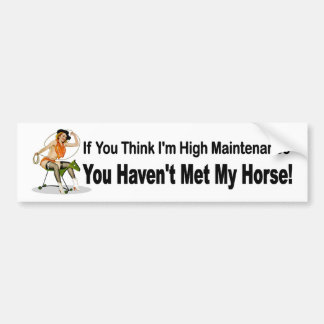 Funny car sticker for women who own horses