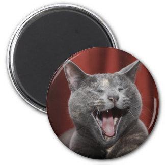 Funny cat 6 cm round magnet