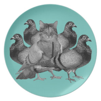 funny cat amongst the pigeons plate