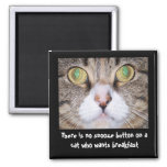 Funny Cat and Saying Square Magnet
