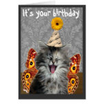 Funny cat birthday card or invitation