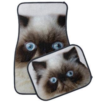 Funny Cat Car Mat