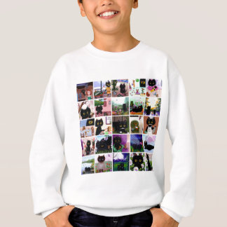 Funny Cat Cartoons Art Creationarts Sweatshirt