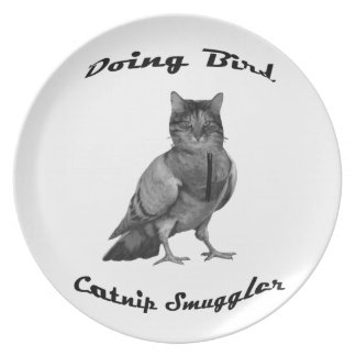 funny Cat doing Bird Plate
