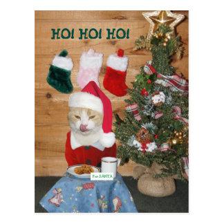 Funny Cat Eating Santa's Snack Postcard