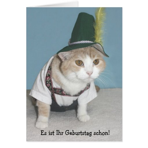 Funny Cat German Birthday Greeting Cards