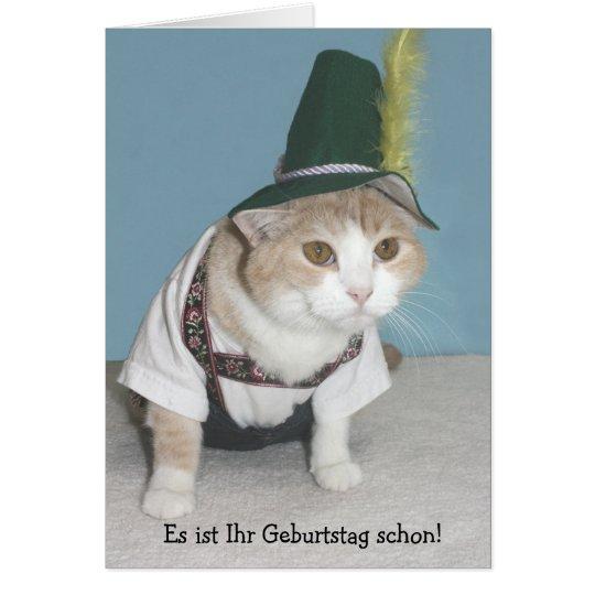 Image result for german cat