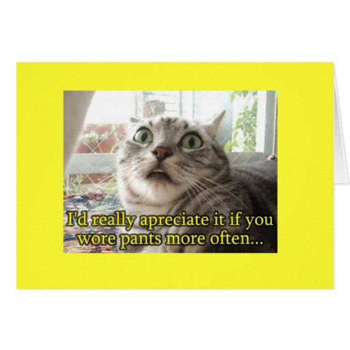 funny cat greeting card zazzle