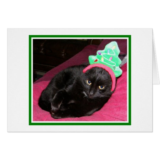 Funny Cat Holiday Christmas Card