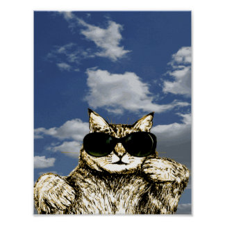 Funny Cat in Glasses Picture Poster