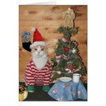 Funny Cat/Kitty Christmas Morning