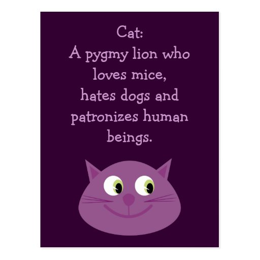 Funny Cat Quote Cute Customizable Charity Post Cards