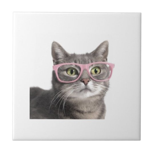 Funny cat small square tile
