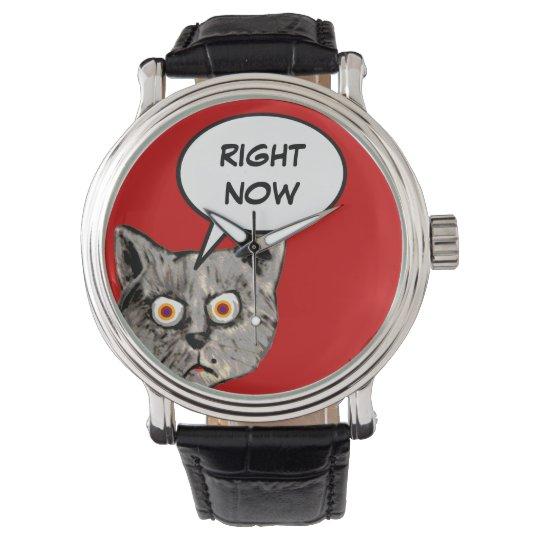 funny cat speech balloon right now watch