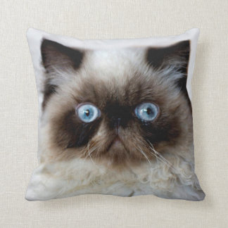 Funny Cat Throw Pillow Throw Cushions