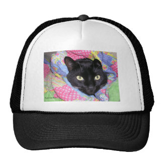 Funny Cat: Wrapped in Blankets - Trucker Hat