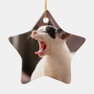 Funny Cat Yawning Ceramic Star Decoration