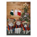Funny Cats/Kitties Feliz Navidad