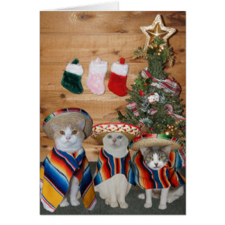 Funny Cats/Kitties Feliz Navidad Card