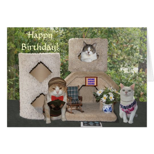Funny Cats/Kitties Happy Birthday from Our House Card